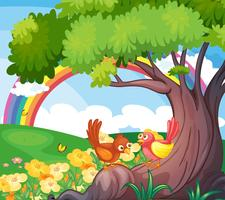 Uccelli sotto l'albero con un arcobaleno nel cielo