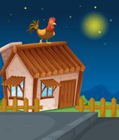 casa e gallina vettore