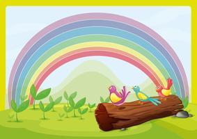 Uccelli che guardano l'arcobaleno vettore