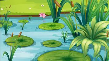Un laghetto con molte piante vettore