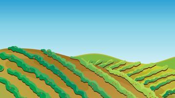 Terreno fertile vettore