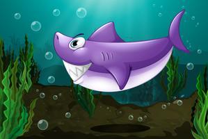 Un grande squalo sotto il mare vettore