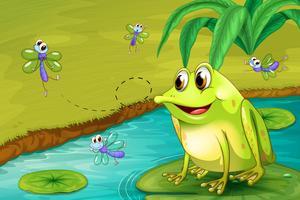 Una rana che aspetta il suo pasto vettore
