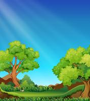 Foresta e cielo vettore