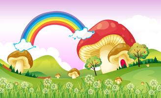 Funghi vicino all'arcobaleno vettore