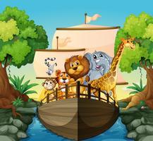 Animali e barca