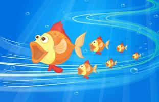 pesce vettore