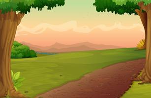 sentiero di campagna vettore