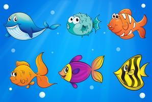 Diversi tipi di pesci sotto l'oceano vettore