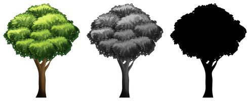 Set di design diverso albero
