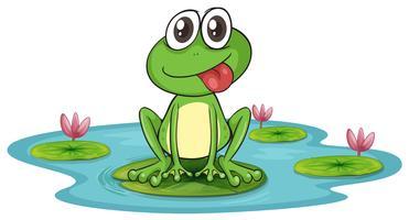 una rana e acqua vettore