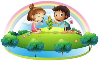 Una ragazza e un ragazzo guardando la pianta