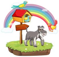 Cane e casetta per gli uccelli vettore