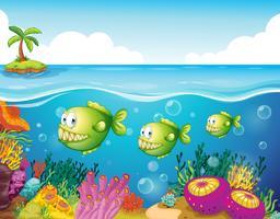 Tre piranha verdi sotto il mare vettore