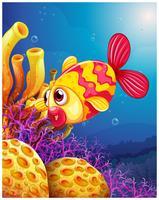 Un pesce colorato sotto il mare