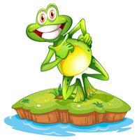 Un'isola con una rana sorridente vettore
