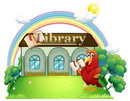 Un pappagallo rosso che legge davanti alla biblioteca