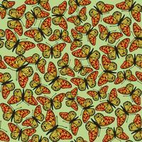 Farfalla senza motivo. Sfondo di fauna selvatica vacanze estive.