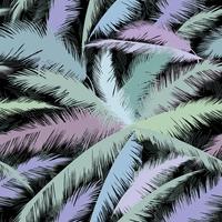 Foglie di palma modello floreale. Natura primavera con texture di sfondo.