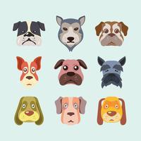 Set di volti di cani