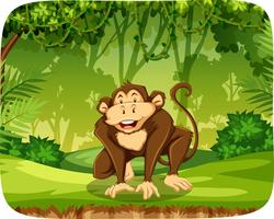 Una scimmia nella giungla vettore
