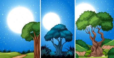 Set di modello di notte vettore
