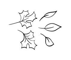 Accumulazione di vettore delle foglie di autunno disegnate a mano. Oggetti in bianco e nero di schizzo isolato, bella caduta elementi di disegno