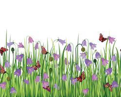 Paesaggio floreale senza soluzione di continuità. Sfondo di fiori Bordo del giardino fiorito vettore