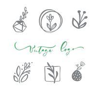 Set di vettore logo floreale scandinavo. Cosmetico organico del fiore dell'icona disegnata a mano, nozze del fiorista, decorazione domestica. Testo del logo vintage
