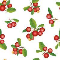 Reticolo senza giunte di estate del mirtillo. Berry sfondo Ornamento floreale