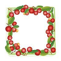Cornice estiva mirtillo. Berry sfondo Modello di cibo natura floreale