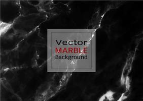 Vector trama di marmo nero.