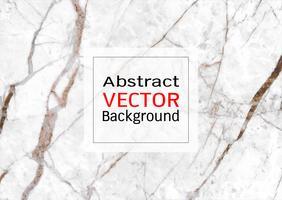 Vector trama di marmo bianco.