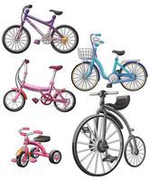 biciclette. vettore