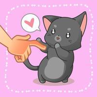 Qualcuno sta toccando un piccolo gatto.