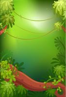 Sfondo verde vuoto vettore