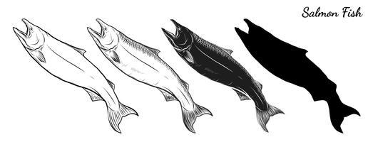 Vettore di salmone a mano di disegno.