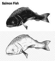 Arte del salmone molto dettagliata in stile art line vettore
