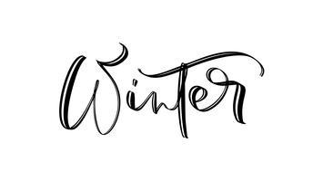 Testo di paese delle meraviglie invernale, lettering pennello disegnato a mano. Citazione di saluti di festa isolata su bianco. Ottimo per le carte di Natale e Capodanno, etichette regalo e etichette, sovrapposizioni di foto. vettore
