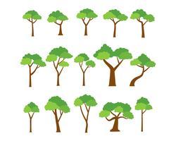 Raccolta di alberi vettoriale su sfondo bianco