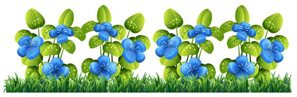 Fiore blu isolato per arredamento vettore