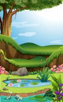 Scena di sfondo con loto nello stagno