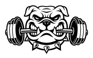 Illustrazione in bianco e nero di un bulldog con manubri vettore