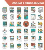 Coding e programmazione vettore