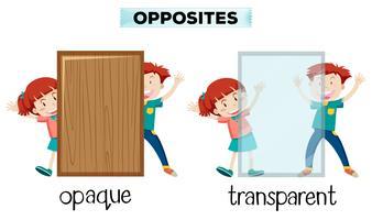 Parola opposta di opaco e trasparente vettore
