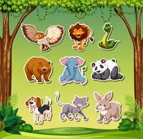 Set di adesivi animali vettore