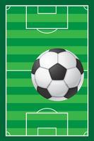campo da calcio e pallone da calcio vettore
