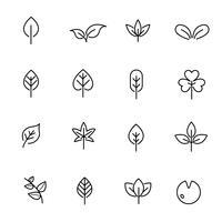 Vettore stabilito dell'icona della foglia. Natura e concetto di simbolo. Tema icona linea sottile. Sfondo bianco isolato. Illustrazione vettoriale.