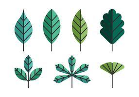 Insieme di clipart delle foglie verdi