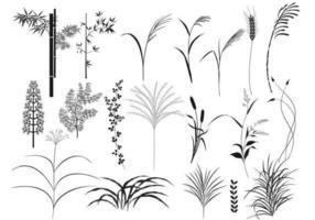 canne e pacchetto di erba vettoriale